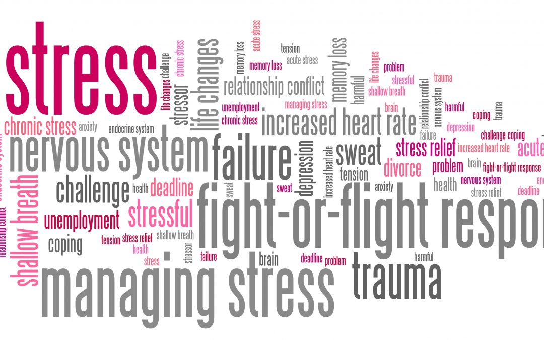 Reduce your sources of STRESS to improve your IMMUNE health!